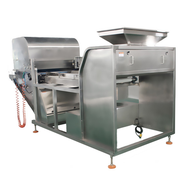 Garlic Stainless Steel Belt Color Sorter